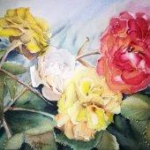 Rosen III, 30 x 20 cm