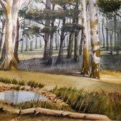Im Wald II, 30 x 20 cm