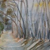 Waldweg, 37 x 28 cm