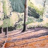 Im Wald II, 30 x 22 cm