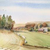 Hattinger Hügelland V, 30 x 20 cm
