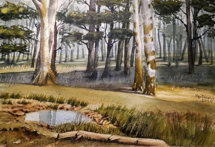 Im Wald II